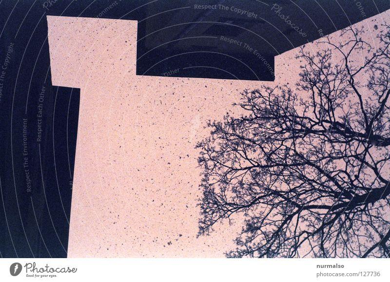 der wahre Packmann 3 Himmel Baum Winter Haus Ferne Wand Spielen oben Architektur Schneefall träumen Beginn Perspektive Dach trist Ecke