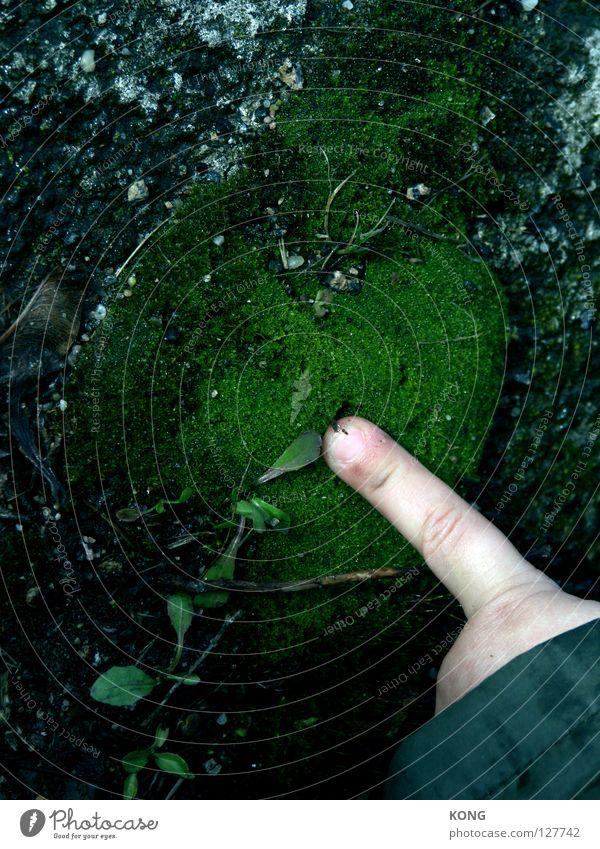 moosfingern Finger Hand Intuition Tippen drücken berühren grün Moos Wachstum Pflanze Zeigefinger entdecken Konzentration Erde Sand Kleinkind Gefühle befingern