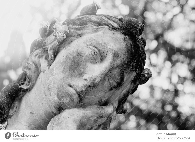 Pathetische Skulptur Natur alt Pflanze Gesicht Traurigkeit feminin Stil grau Stein Stimmung Design träumen Park retro Vergänglichkeit Schönes Wetter