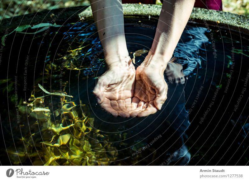 Ursprung Mensch Sommer Wasser Hand ruhig Umwelt Leben natürlich Gesundheit Lifestyle Trinkwasser Getränk Zukunft Lebensfreude trinken Wellness