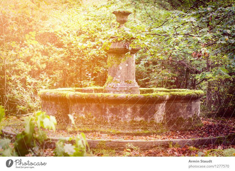 Märchenbrunnen Lifestyle Design Natur Sommer Herbst Garten Park Bauwerk Sehenswürdigkeit ästhetisch dreckig dunkel natürlich Stimmung Vorfreude Kitsch Romantik
