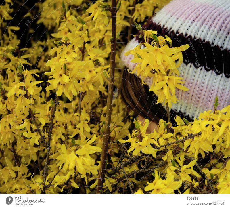 SCHNÜFFLER Frau Natur Pflanze gelb Umwelt Gefühle Holz Garten Blüte Frühling Park Gesundheit Zufriedenheit Kraft gehen Streifen