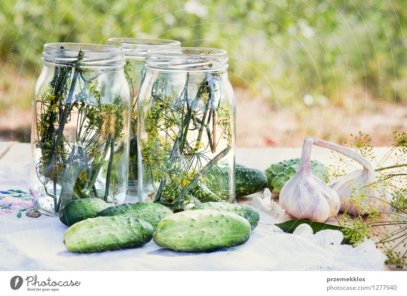 Vorbereiten der Bestandteile für in Essig einlegende Gurken Gemüse Kräuter & Gewürze Vegetarische Ernährung Garten frisch natürlich grün konserviert Salatgurke