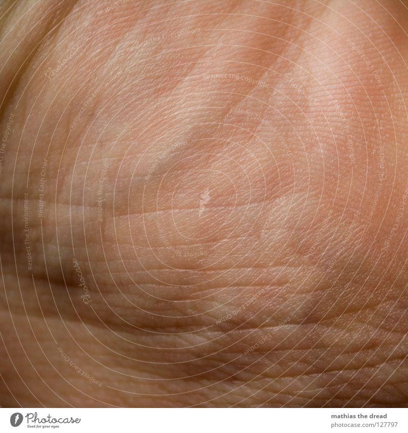 DAILY USE schön blau rot Leben Linie Beleuchtung Gesundheit Haut klein Spuren Teile u. Stücke Falte Blut Furche durcheinander Gefäße