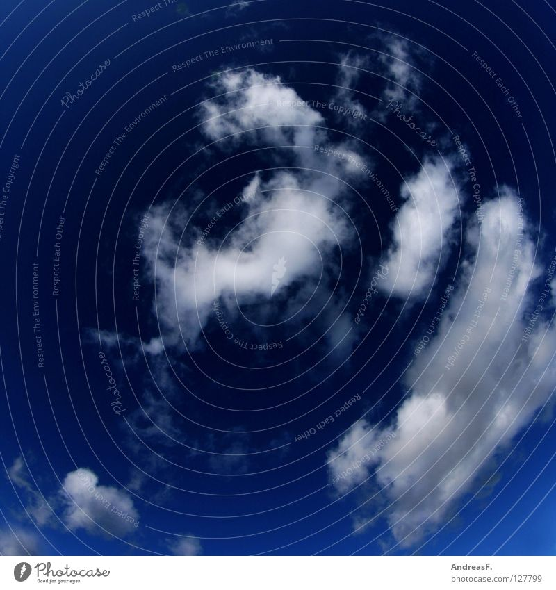 Himmelskörper Himmel Natur blau Ferien & Urlaub & Reisen Sommer Wolken Umwelt Freiheit Luft Wetter fliegen Klima frei ökologisch atmen Blauer Himmel