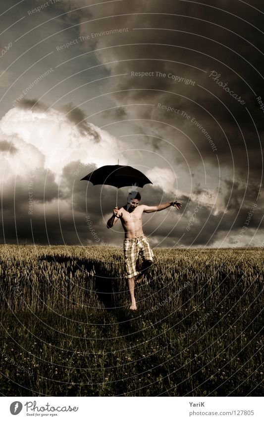 regenmacher Gras Weizen Blatt Horizont grau braun gelb dunkel schwarz Zufriedenheit Mann Oberkörper Barfuß Hose Shorts Leidenschaft Wind Regenschirm Schweben