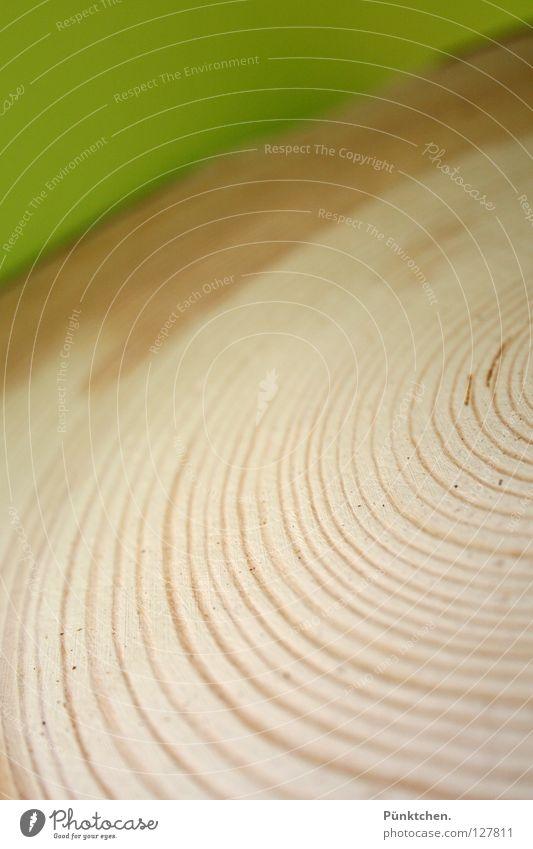 ° wooden wheel grün Baum Holz hell Linie nass frisch Kreis Werkzeug Sauberkeit Mitte trocken Sturm Baumstamm drehen feucht