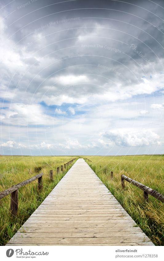 Sylt I Ferien & Urlaub & Reisen Ferne Freiheit Umwelt Natur Landschaft Pflanze Himmel Wolken Horizont Unwetter Wind Sturm Gras Sträucher Küste Strand Moor Sumpf