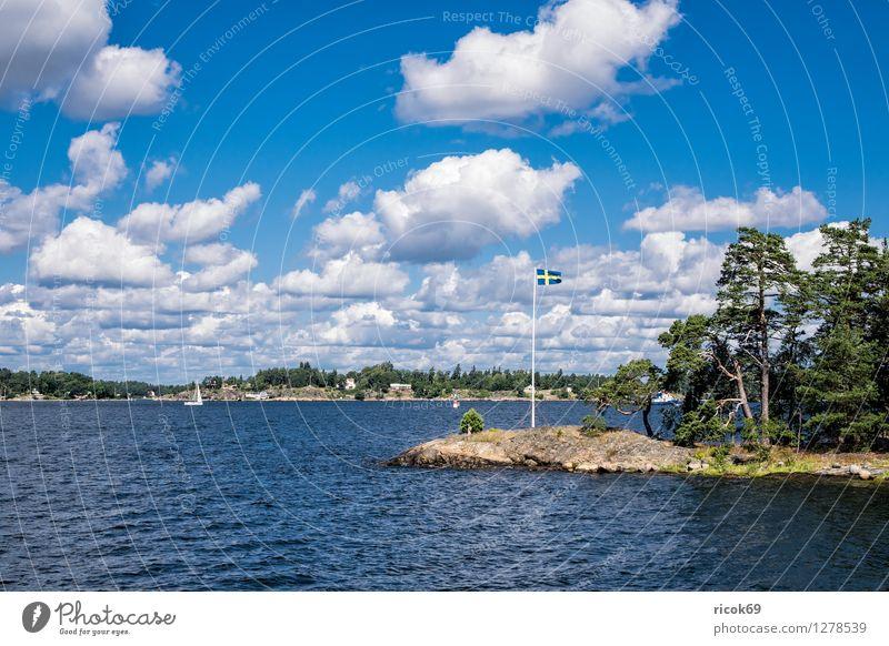 Schären an der schwedischen Küste Natur Ferien & Urlaub & Reisen blau grün Baum Erholung Landschaft Wolken Wald Tourismus Idylle Insel Ostsee Fahne Fahnenmast