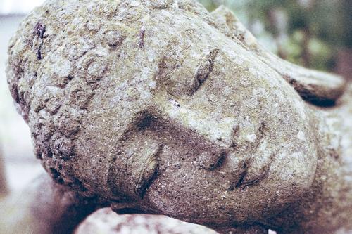 Entspannen schön Erholung Gesunde Ernährung ruhig Gesicht Leben Glück Gesundheit Lifestyle Gesundheitswesen Zufriedenheit Körper Wellness Wohlgefühl