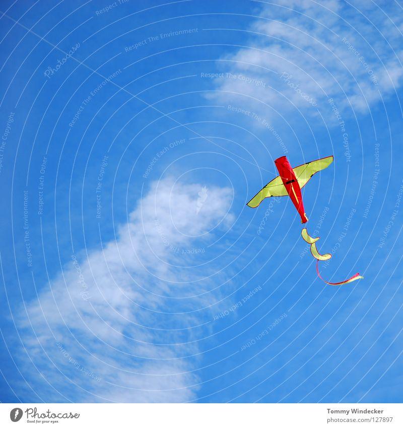 Kite Aerial Photography III Himmel blau Strand Freude Wolken Herbst oben Freiheit Luft Kindheit Wind Freizeit & Hobby fliegen frei Flugzeug Luftverkehr