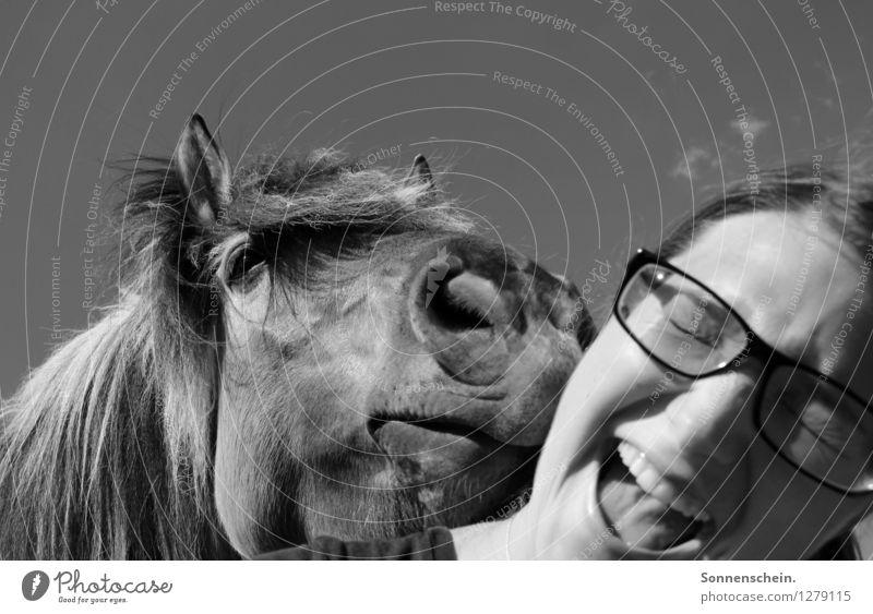 Guten Freunden gibt man ein Küsschen Himmel Natur Jugendliche Junge Frau Freude Tier 18-30 Jahre Erwachsene Leben feminin lachen Kopf Freundschaft Fröhlichkeit