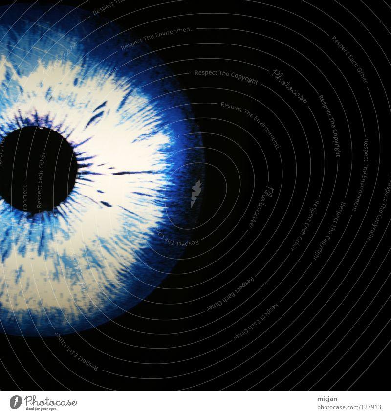 Behind her Eyes blau schwarz Auge dunkel Kreis rund einzigartig geheimnisvoll Konzentration Medien Loch Geometrie Muskulatur graphisch Sinnesorgane blind