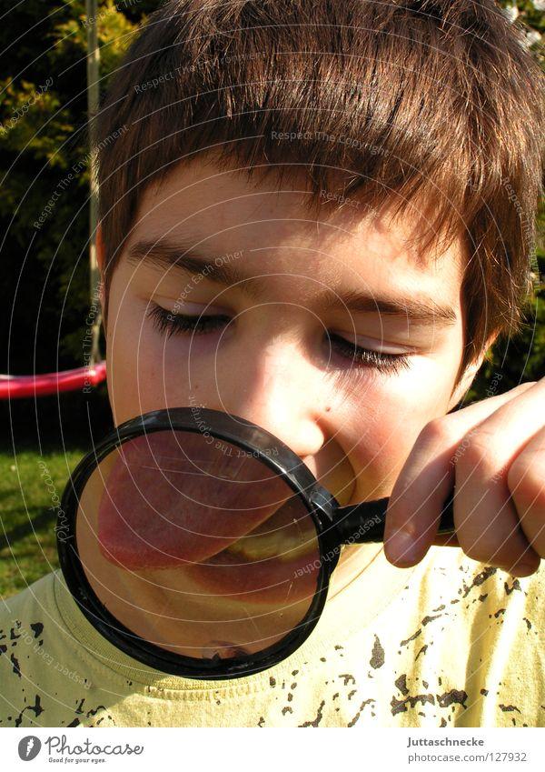 Bäh Mensch Kind Spielen Junge klein groß Spuren Konzentration Zunge skeptisch Genauigkeit Lupe Spitzel untersuchen vergrößert Agent
