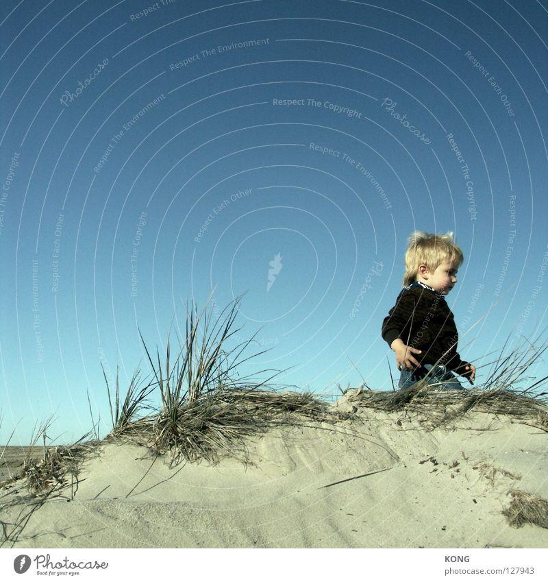 leaving klein Zwerg Kind Kleinkind Horizont gehen Wicht süß Strand Freude Stranddüne Sand laufen rauslaufen cute child Wind Blauer Himmel