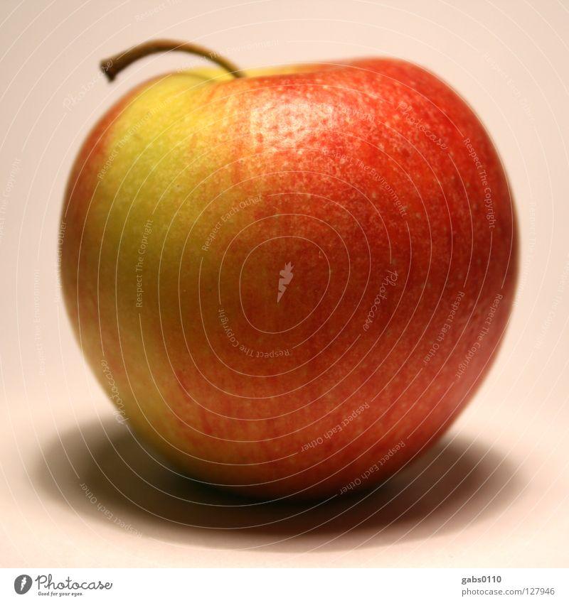 Früchtchen Natur schön Baum rot Farbe gelb Gesundheit Frucht frisch ästhetisch rund Apfel Stengel Bioprodukte Zucker Biologische Landwirtschaft