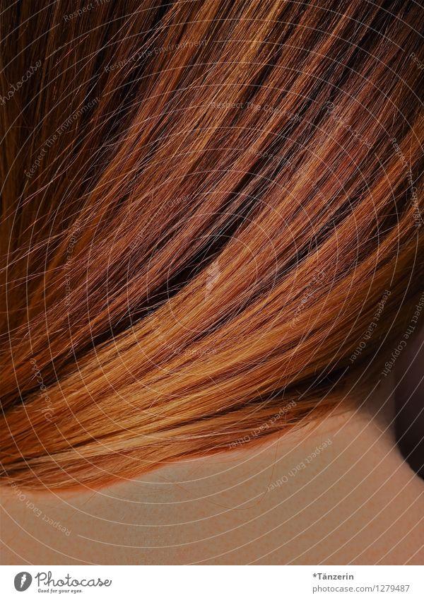 haarig Mensch feminin Junge Frau Jugendliche Haare & Frisuren 1 18-30 Jahre Erwachsene blond langhaarig ästhetisch natürlich geheimnisvoll ruhig Farbfoto