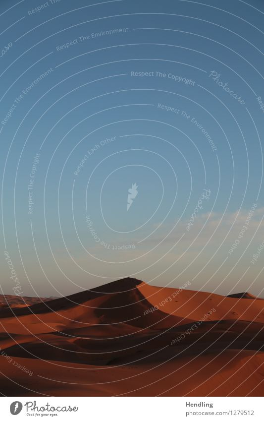 Sahara Düne Natur Landschaft Sand Himmel Wärme Wüste Marokko Afrika Ferne heiß geheimnisvoll Strukturen & Formen Menschenleer rot blau gelb Farbfoto mehrfarbig