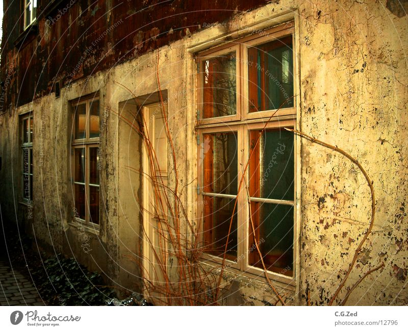 Mitten In Der Stadt alt Haus Wand Architektur Rost Verfall Altona