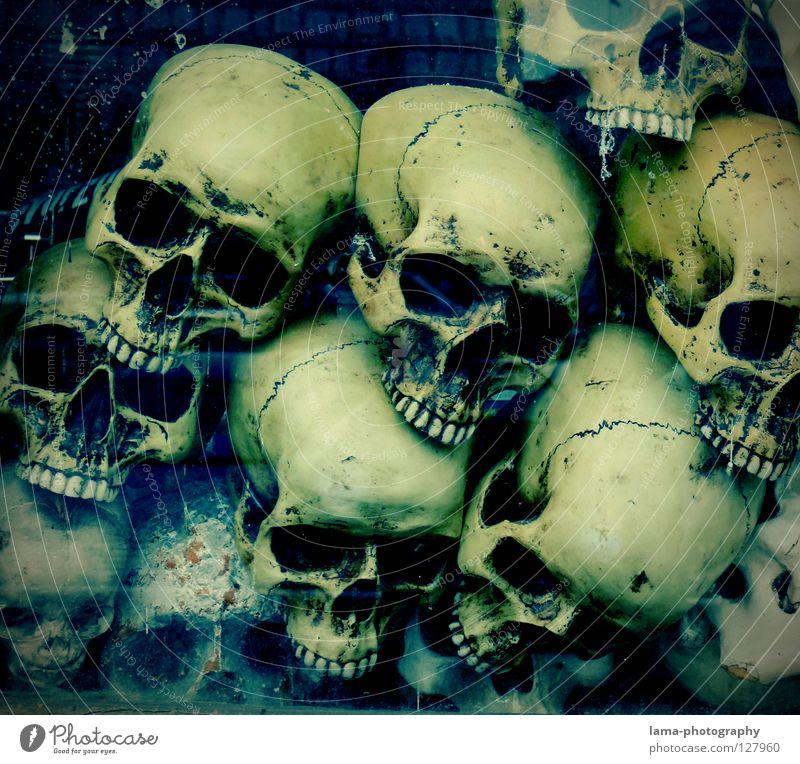 deep. totenkopf Skelett Gehirn u. Nerven fatal vergiftet ertrinken Meer Meeresboden Algen gruselig Horrorfilm Angst Alptraum Grab Friedhof gefährlich Halloween
