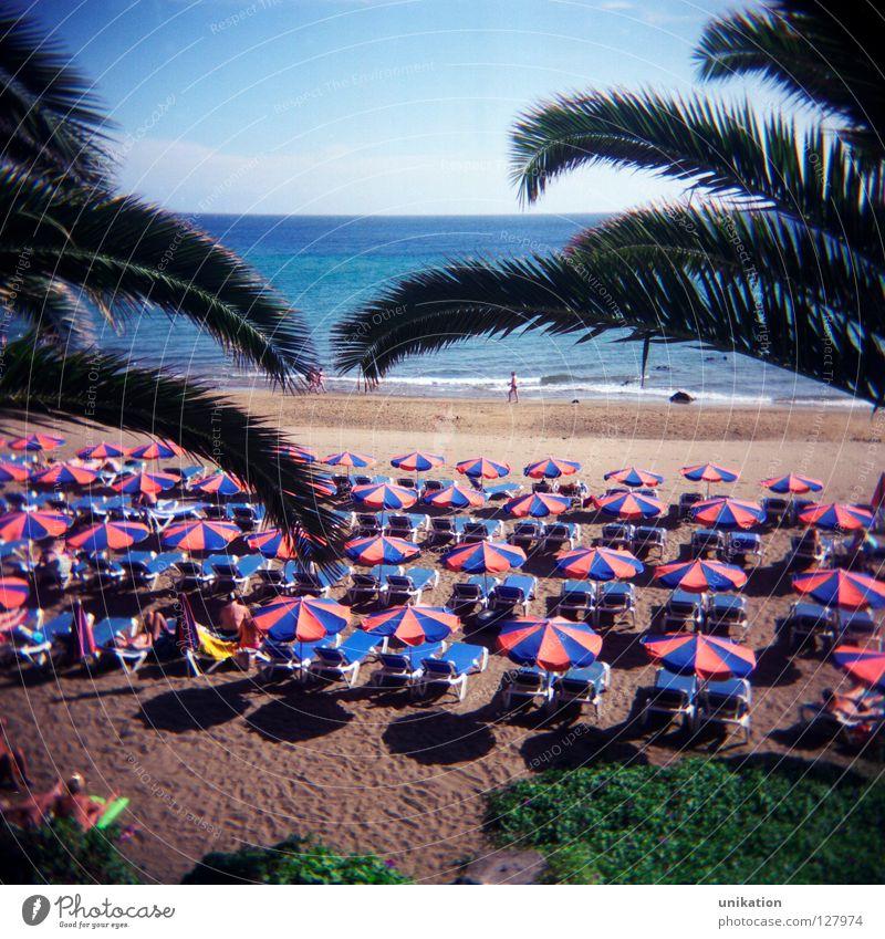 Aussicht ruhig Ferien & Urlaub & Reisen Tourismus Strand Meer Himmel Horizont Sommer Palme Ferne trist Sonnenschirm Quadrat Lanzarote Tourist Holiday leer