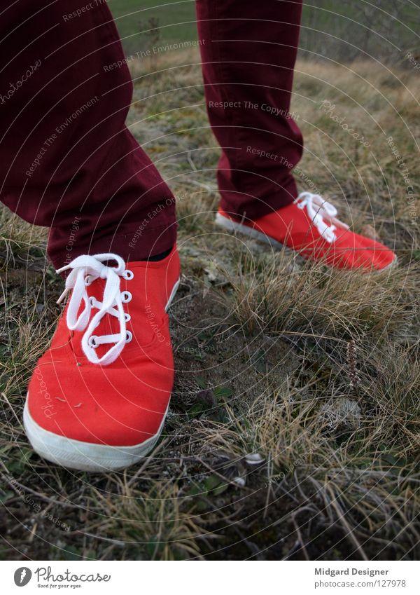 Rot Winter wandern Mensch Junge Frau Jugendliche Leben Beine Fuß 1 18-30 Jahre Erwachsene Gras Hose Schuhe Bewegung gehen laufen rot Farbe schreiten Raureif