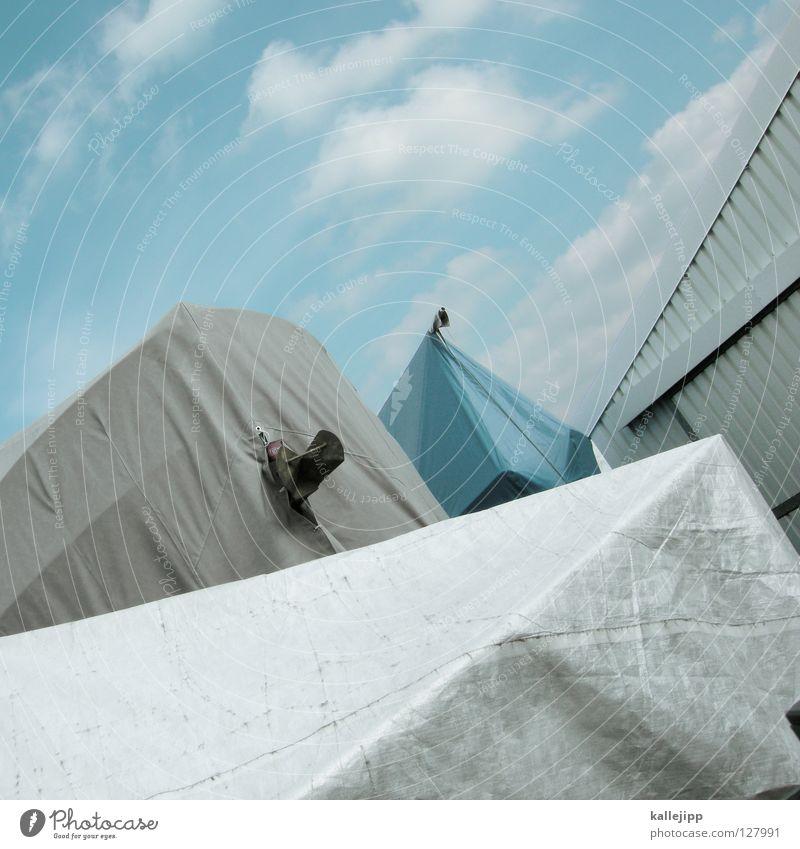 warten auf den frühling Himmel blau Leben Bewegung grau springen Wasserfahrzeug Güterverkehr & Logistik Hafen Lagerhalle Abdeckung Kapuze Segelboot Heimat Jacht
