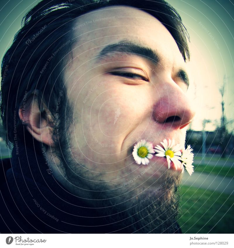 Frühling zum Nachtisch Mensch Jugendliche Pflanze Freude Gesicht Erwachsene Junger Mann lustig Kopf Blüte 18-30 Jahre Bart Gänseblümchen Unsinn Vignettierung