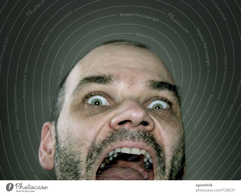 Bad Hair Day … Mann grün Gesicht schwarz Auge dunkel Haare & Frisuren grau Kopf Traurigkeit Mund Angst glänzend Nase Behaarung Trauer