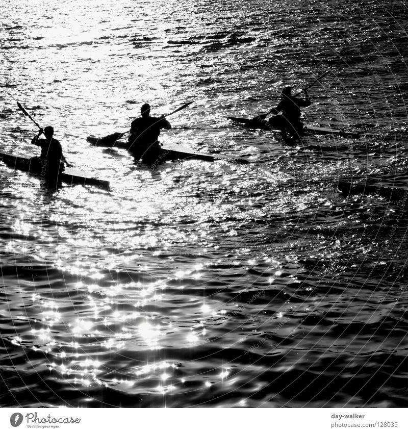Der Sonne entgegen Wasserfahrzeug Kanu Kajak See Elektrizität Wellen Reflexion & Spiegelung Sonnenlicht Ruderer Paddel fahren Rudern Oberfläche dunkel Licht