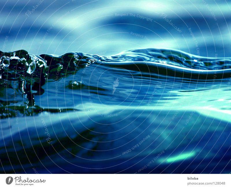 Welle im klaren Wasser bei Gegenlicht Wellen See liquide Flüssigkeit weich zart ruhig Gefühle beruhigend leer Luft ursprünglich tief kalt Elemente Einsamkeit
