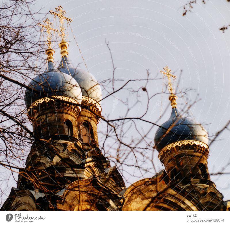 Windschief Rücken Wolkenloser Himmel Baum Zweige u. Äste Kirche Bauwerk Architektur Sehenswürdigkeit Zeichen alt leuchten exotisch historisch oben gold