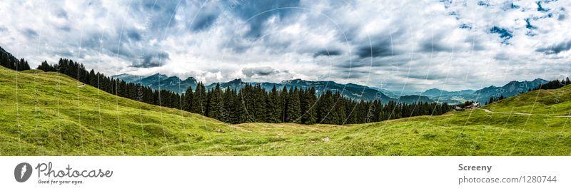 Weite Blicke Ferien & Urlaub & Reisen Tourismus Ausflug Berge u. Gebirge wandern Natur Landschaft Pflanze Himmel Wolken Sommer Wetter Baum Gras Sträucher Wiese