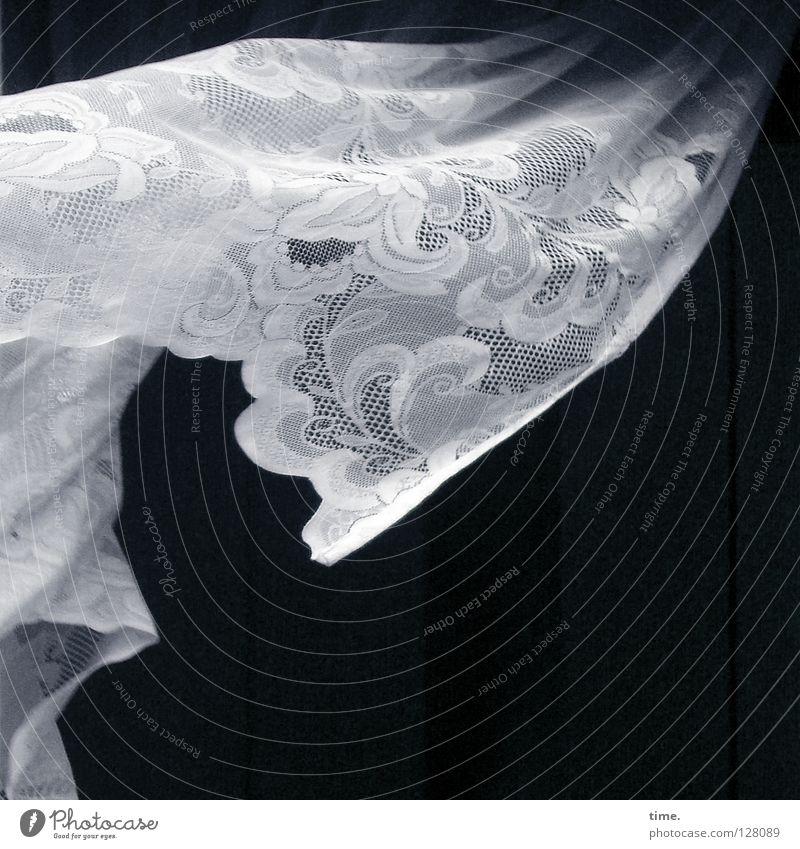 Kurzausflug Fenster Leben Bewegung Luft Hintergrundbild Raum offen gehen Wind fliegen Ausflug Dekoration & Verzierung Stoff Spitze Vergänglichkeit Vorhang