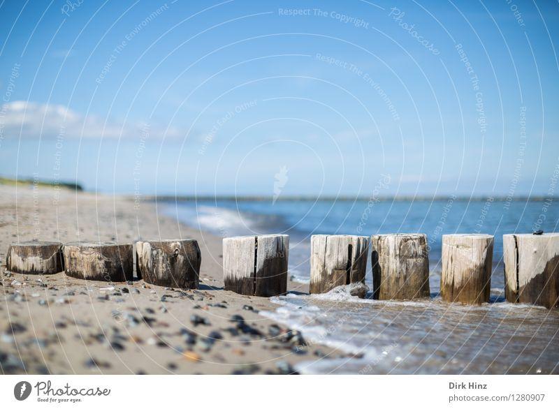 Buhnen östlich von Zingst Himmel Natur Ferien & Urlaub & Reisen blau Wasser Meer Landschaft Strand Umwelt Küste Holz Stein Sand Horizont Tourismus Wellen