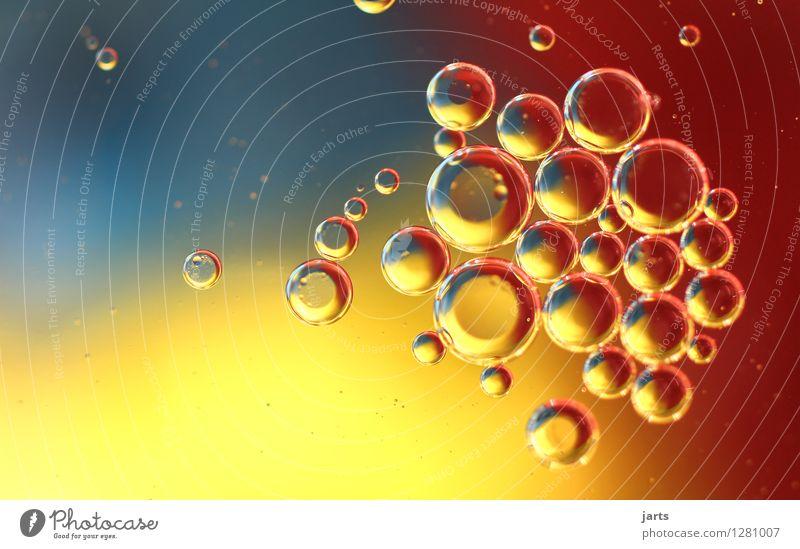 colour your life #5 Wasser Schwimmen & Baden Flüssigkeit nass natürlich rund blau gelb rot Kreativität Blase Tropfen mehrfarbig Schweben abstrakt Farbfoto