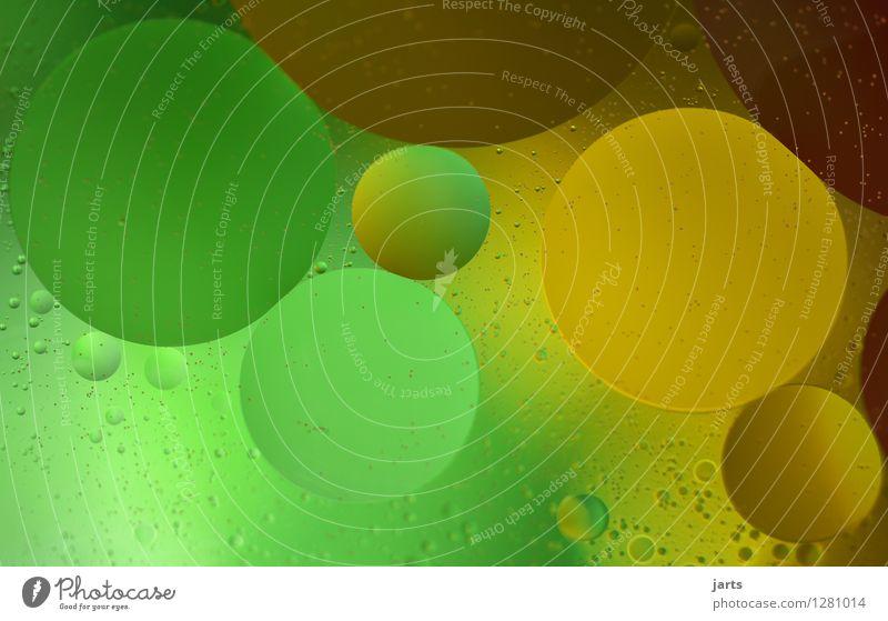 colour your life #7 Wasser einzigartig nass braun gelb gold grün Kreativität Hintergrundbild Blase mehrfarbig Farbfoto Nahaufnahme Experiment abstrakt