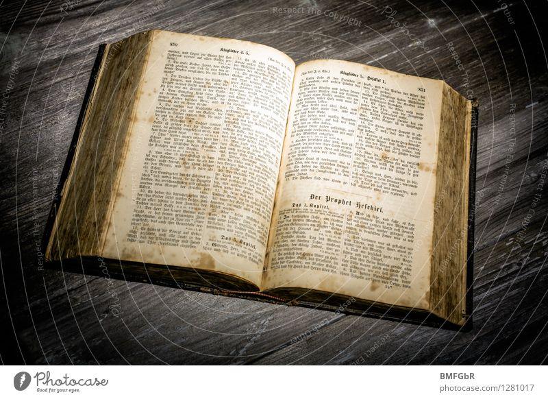 Das Buch der Bücher Religion & Glaube Schule lernen Studium lesen Hoffnung Bildung Verfall Wissenschaften Schriftstück Nostalgie Gott Buchseite antik