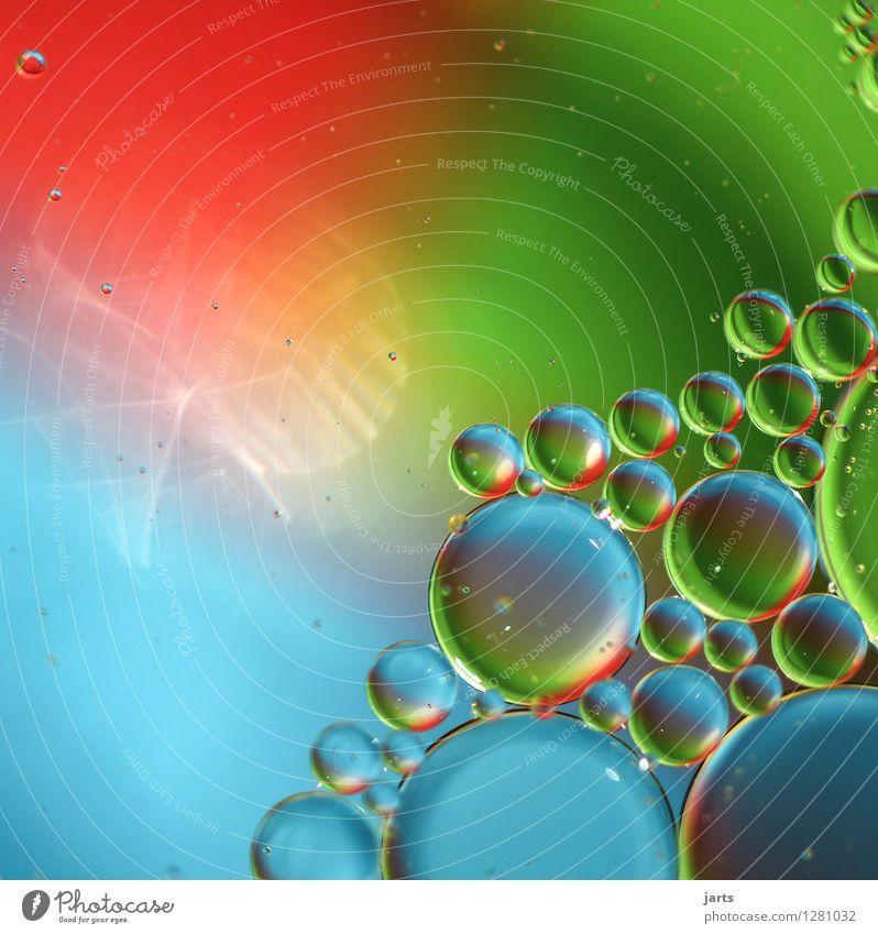 colour your life #1 Wasser Schwimmen & Baden Flüssigkeit glänzend nass rund blau grün rot Kreativität Blase Öl leuchtende Farben abstrakt Farbfoto mehrfarbig