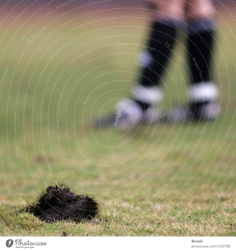 Maulwurf Fußballplatz Spielfeld Feld Wiese Gras Halm kaputt Loch Schuhe Fußballschuhe kürzen Fußballer Torwart Sportplatz Hügel dunkel schwarz braun grün