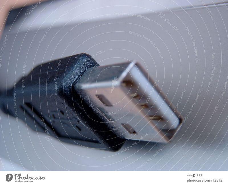 USB-Kabel Technik & Technologie Leitung Anschluss Daten transferieren Elektrisches Gerät Schnittstelle