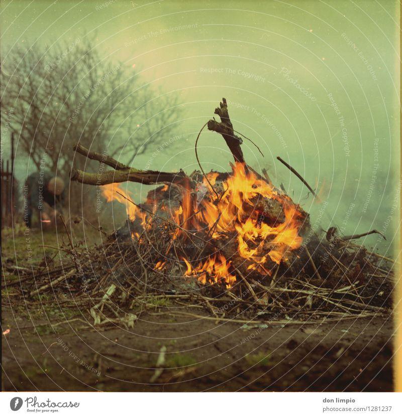 Kartoffelfeuer Mensch Mann alt grün Umwelt Leben Herbst Holz Garten Stimmung Nebel Erde Klima Warmherzigkeit retro Abenteuer
