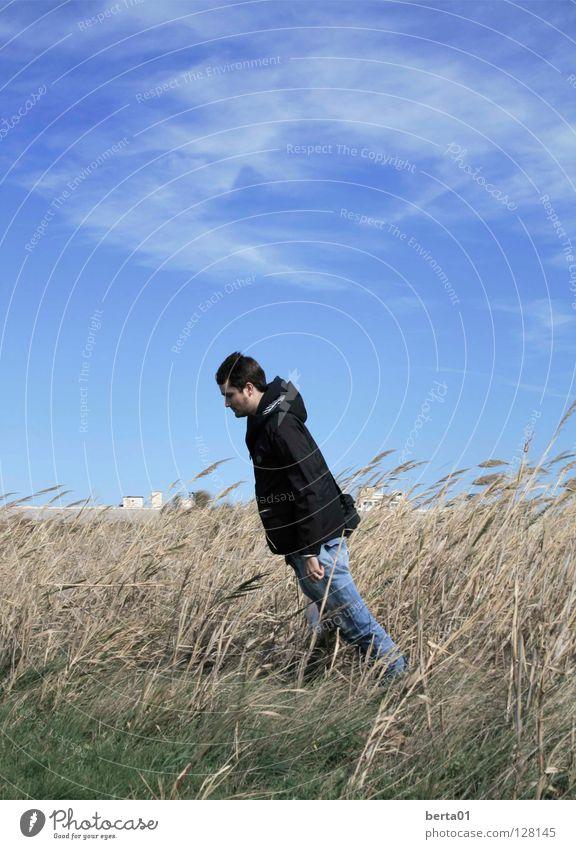 Gegen den Wind Mann Himmel grün Freude Ferien & Urlaub & Reisen schwarz Wolken Gras Freiheit grau braun verrückt kämpfen Windböe Gegenwind