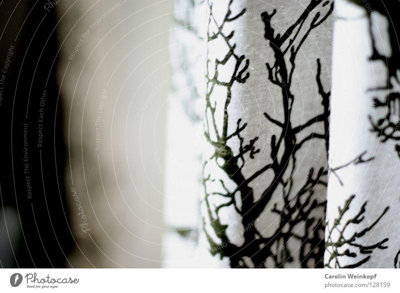 Natur im Flur. weiß Baum grün Stoff Falte Vorhang hängen Gardine Druck Druckerzeugnisse Aufdruck