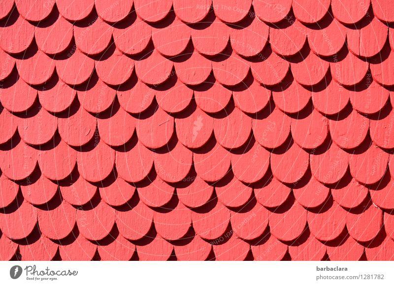 monoton | Schindel an Schindel Haus Gebäude Mauer Wand Fassade Dachziegel Holz Ornament Reihe rot Design Farbe Genauigkeit Kunst Ordnung Präzision Farbfoto