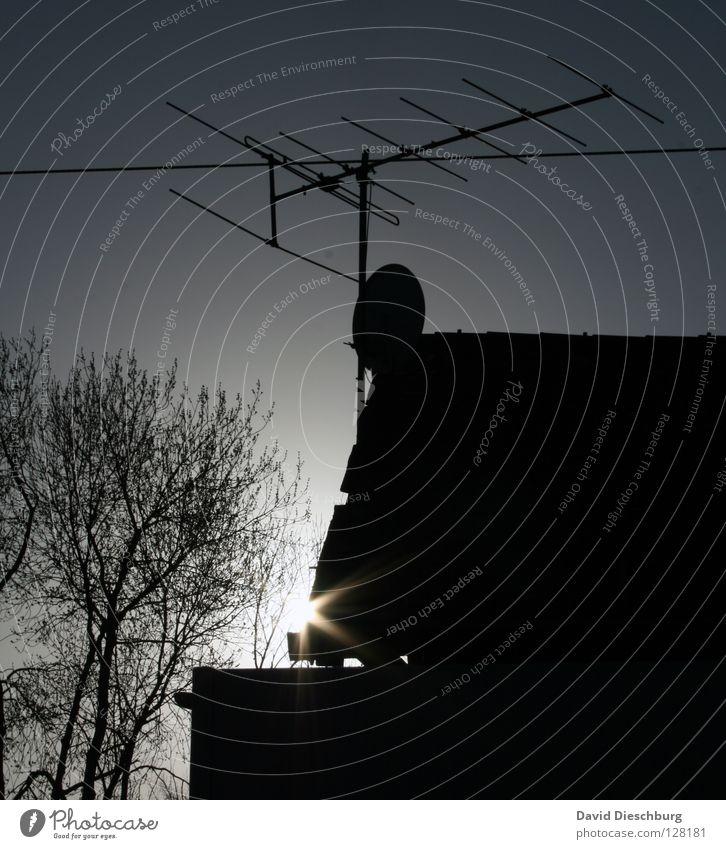 Sonniges Fernsehen Himmel Baum Sonne blau schwarz Lampe dunkel Wärme Linie Beleuchtung Metall Elektrizität Technik & Technologie Fernseher Kabel Dach