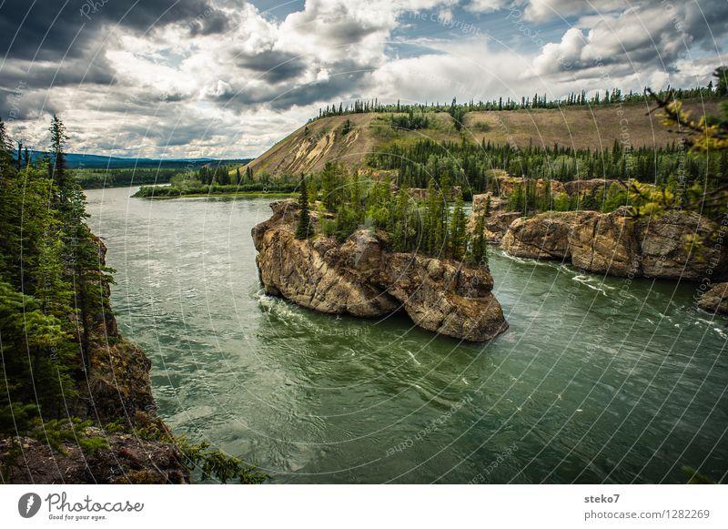 Yukon Einsamkeit Ferne Wald Bewegung Felsen bedrohlich Fluss Flussufer Stromschnellen