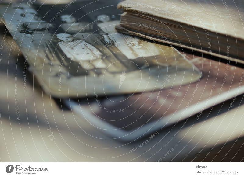 Erinnerungen alt Traurigkeit Senior Familie & Verwandtschaft braun Kindheit Buch Fotografie Vergänglichkeit einzigartig Ewigkeit Trauer Vergangenheit Sehnsucht