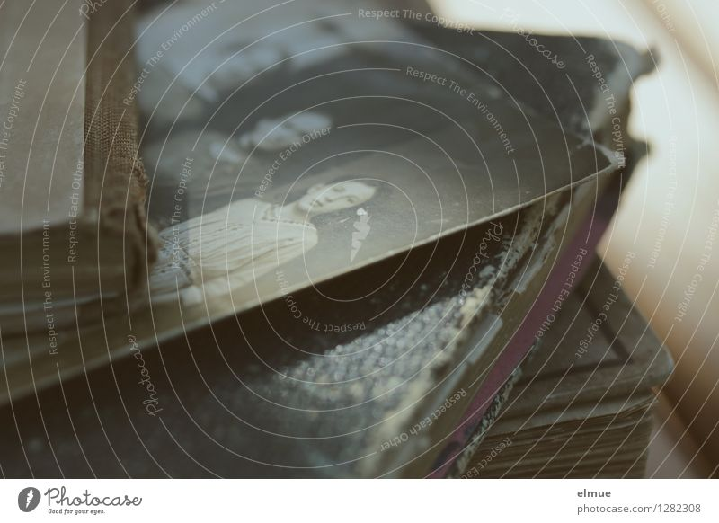 ... ihr Leben alt Traurigkeit Familie & Verwandtschaft Kindheit Buch Fotografie Ewigkeit historisch Trauer Sehnsucht Schmerz Großmutter Sammlung Erinnerung