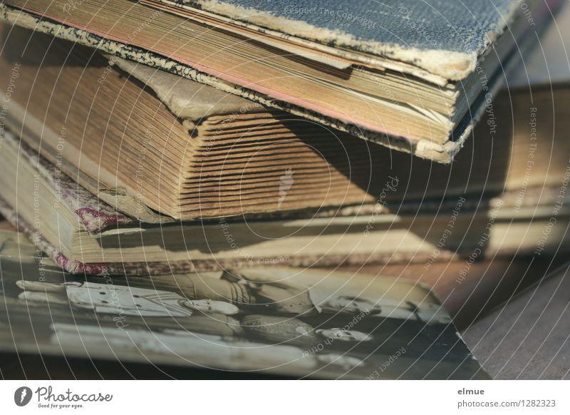 was bleibt Buch Fotoalbum Fotografie Papier Tagebuch alt historisch Originalität braun Traurigkeit Trauer Schmerz Sehnsucht verlieren Ewigkeit Kindheit Krieg